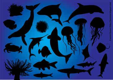 Vida marina 2