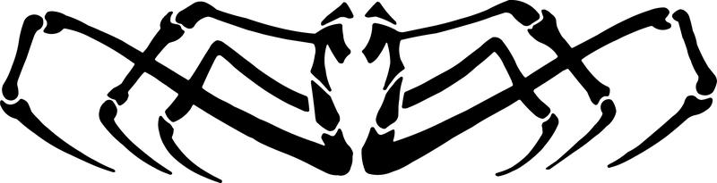Clip Art - aranha