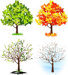Tree Dream Place Para Começar