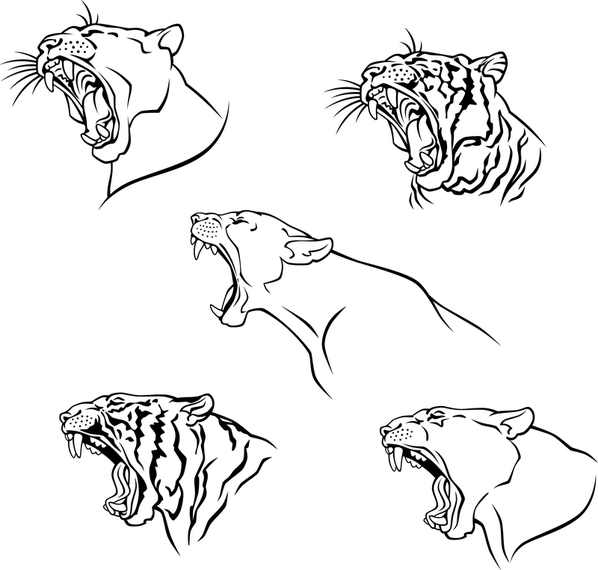 Tiger Image 10 Vector