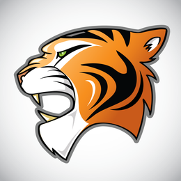 Tiger Image 25 Vector