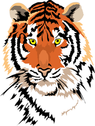 Tiger Image 01 Vector