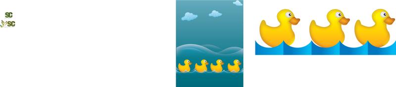 Patos de agua