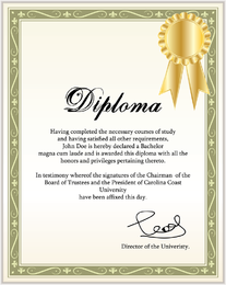 Certificate Of Commendation Vector