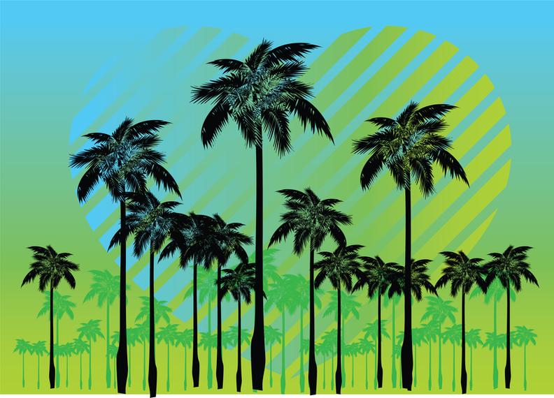 Vectores gratis de palmeras