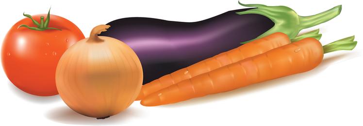 Verduras Vector 3