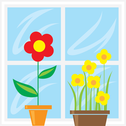 Window Vector 2