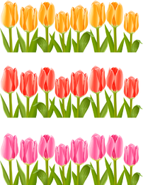 Vector de tulipanes de colores