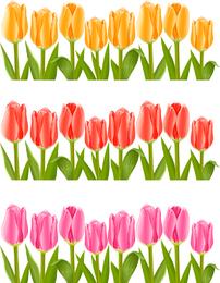 Vetor de tulipas coloridas