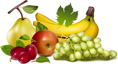 Fruits Vector 4