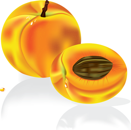 Tasty peach illustration