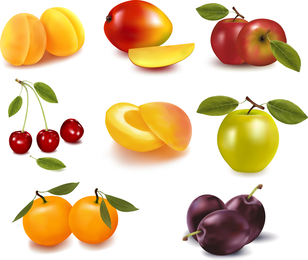 Eight Kinds Of Fruits Vector