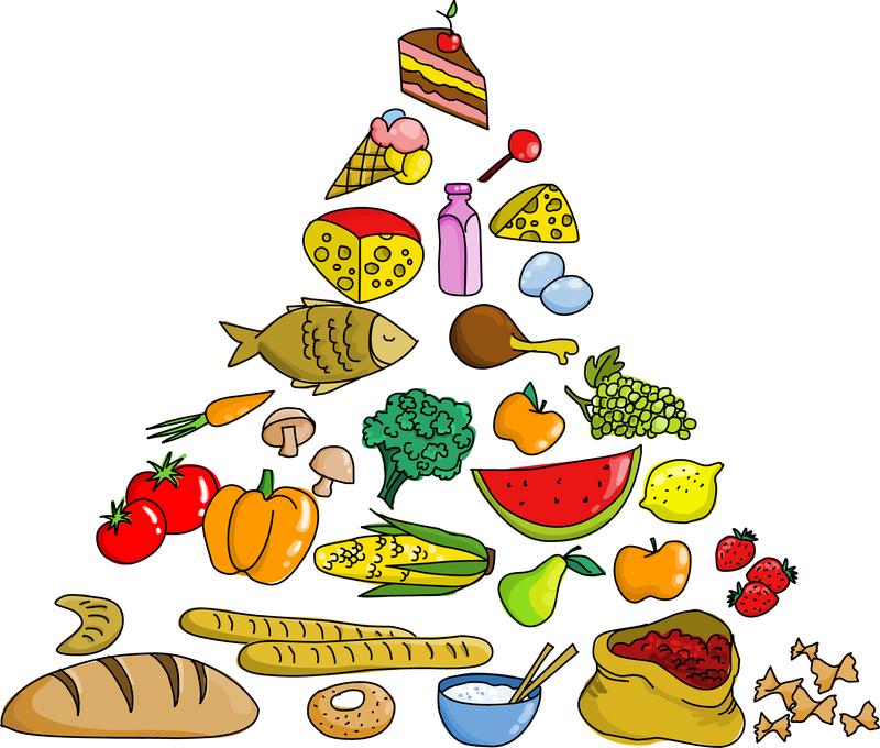 food pyramid vector vector download food pyramid clipart black and white food pyramid clip art simple