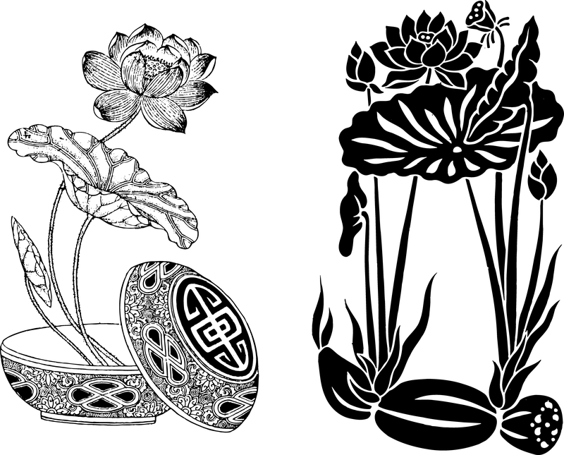 Lotus Flower Line Drawing Vector Free Download : Both classical lotus root vector download