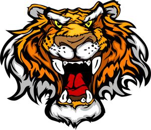 Tiger Image 31 Vector