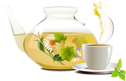 Vektor des Chrysanthemen-Tee-Tees 01