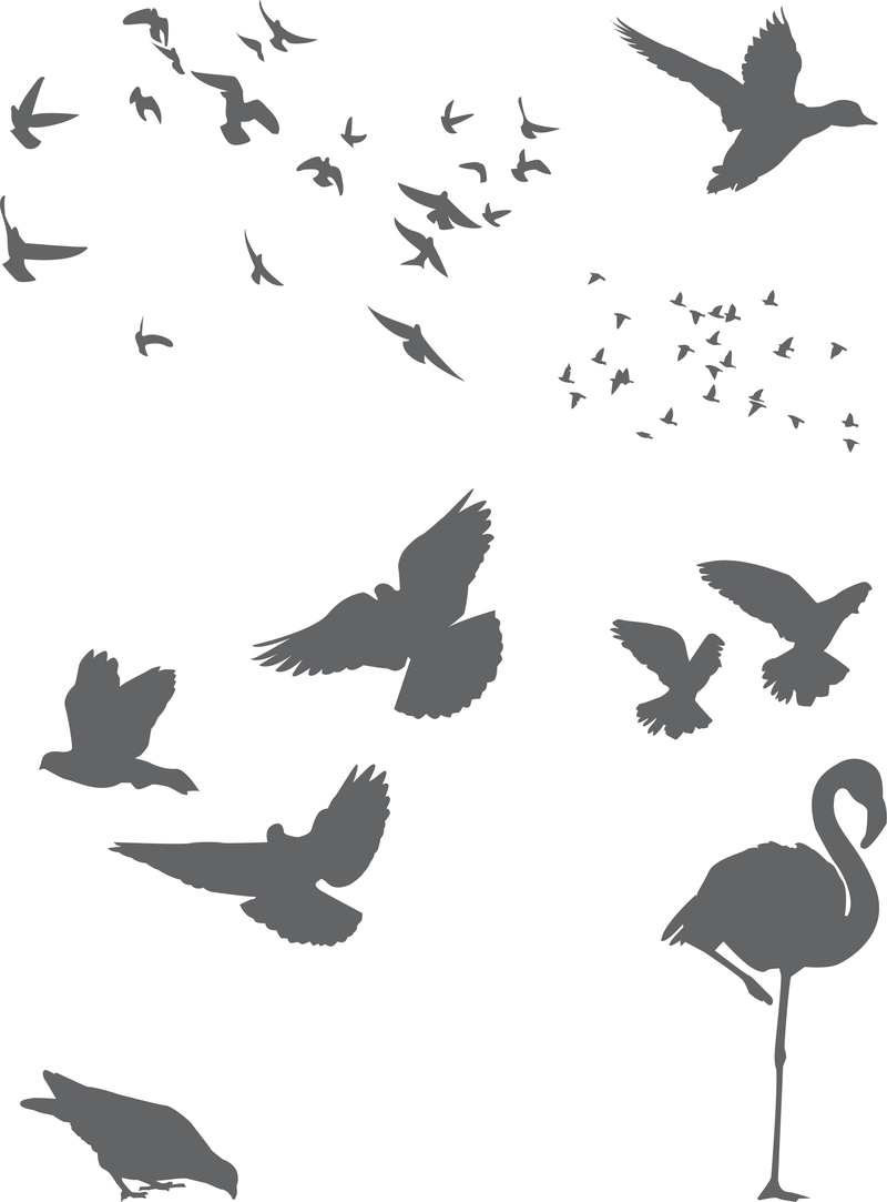 Free Vector Birds - Vector download