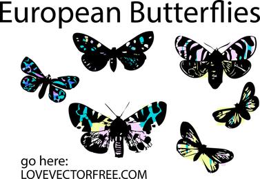 Vidrieras de mariposas