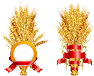 Vetor de trigo 05