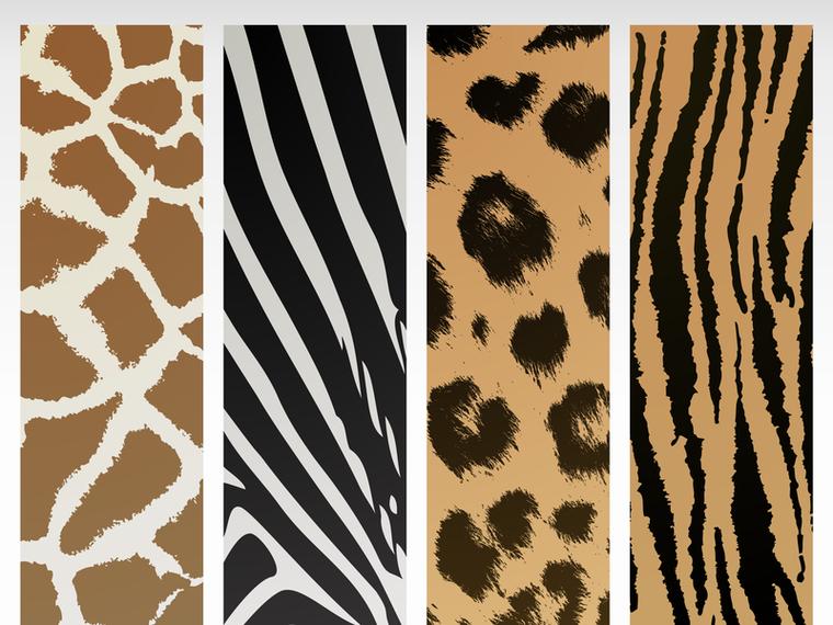 Vector de textura animal