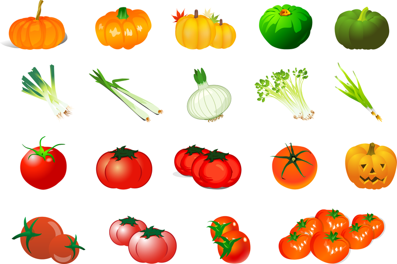 Vector Of Vegetables
