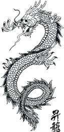 Japanese Dragon 3