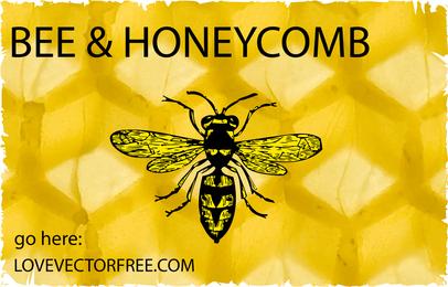 Hornissenbiene und Bienenwabe