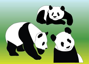 Panda vectores