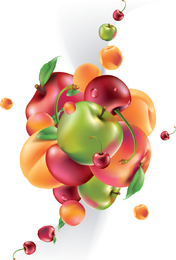 Frutas ilustradas realistas sobre blanco