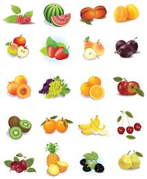 Conjunto de frutas gráficos vectoriales