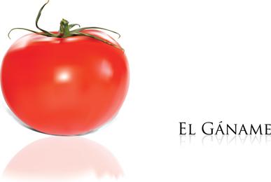 Tomato Vector 2