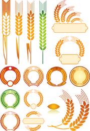 Wheat 01 Vector