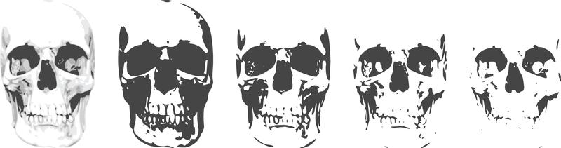 6 Layer Skull