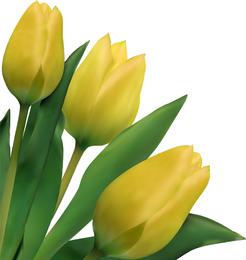 Bright Tulips 03 Vector