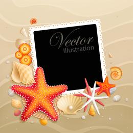 Vetor de concha estrela do mar 05