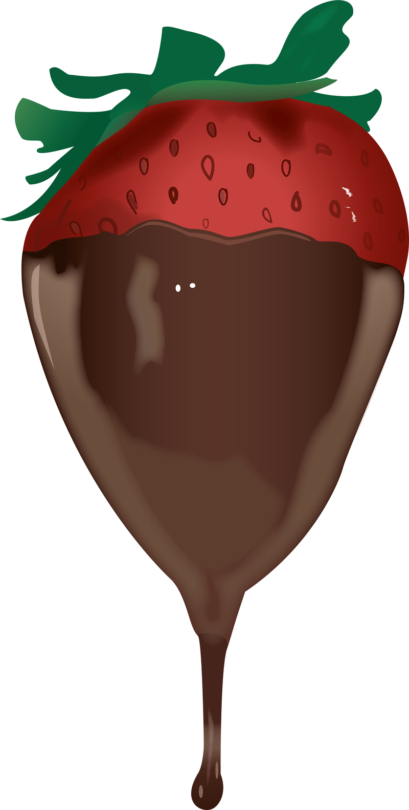 800 x 1582 png 238kBChocolate