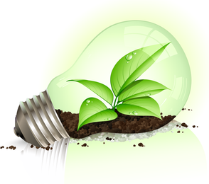 Green Leaf And Energy Saving Lamps Vector
