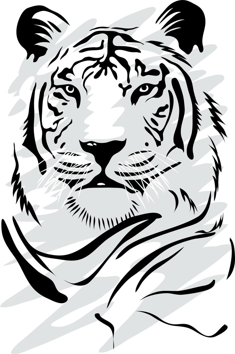 tiger vector graphics to download rh vexels com tiger face vector art tiger stripes vector art
