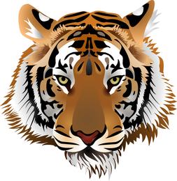 Tiger Image 03 Vector
