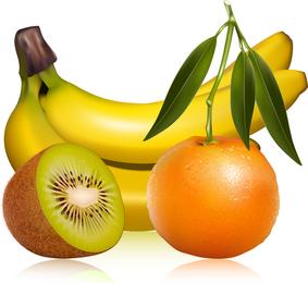 Imágenes de frutas 01 Vector
