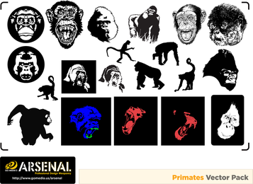 Gomedia Gorillas And Monkeys Produced Vector