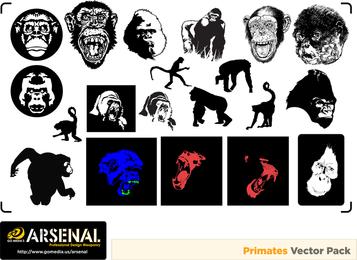 Vector de Gomedia Gorilas And Monkeys Produced