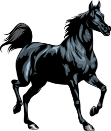Horse 02 Vector