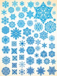 Variedade De Flocos De Neve Vector 1