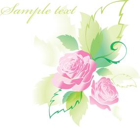 Hermosas Rosas Tarjetas de Felicitación 05 Vector