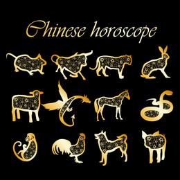 2 conjuntos de 12 Zodiac Vector