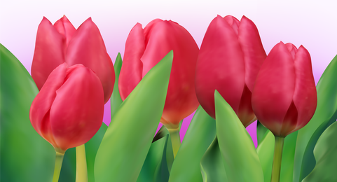 Bright Tulip 01 Vector