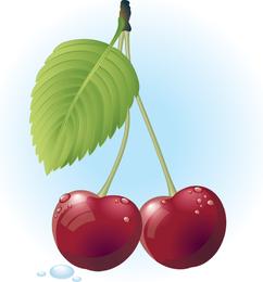 Ilustración de vector de cereza roja gratis
