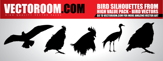 Vectoroom Free Vector 1 Birds