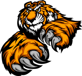 Tiger Image 19 Vector